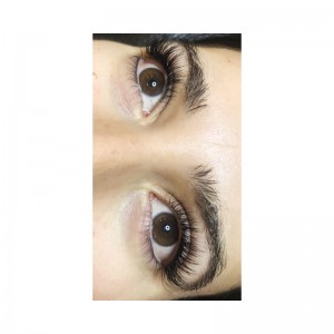 Full Set Classic Lashes